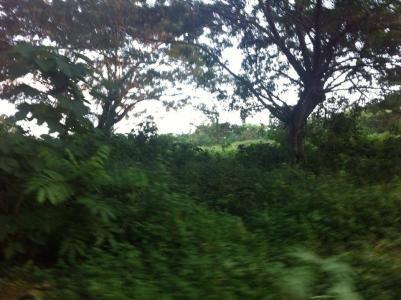 5.8 hectare land in laguna