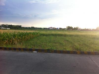 6 hectare land in cabuyao laguna